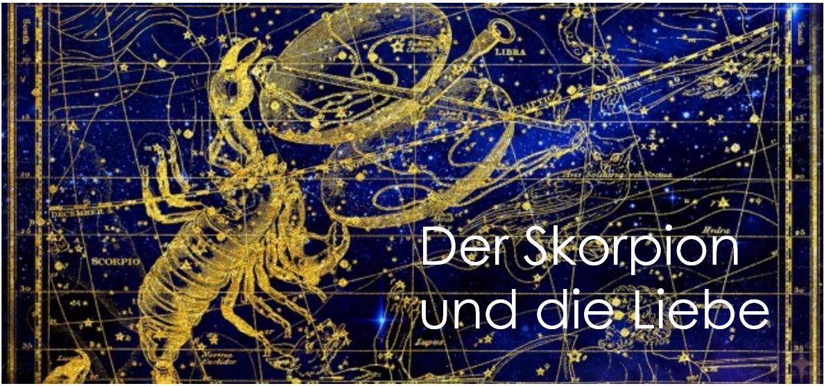 der_skorpion_und_die_liebe